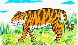 Рисуем Фломастерами: Животные разных Континентов