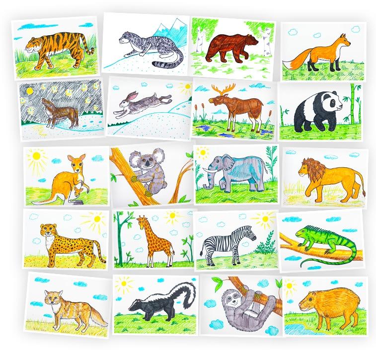 Онлайн-курс для детей Рисуем фломастерами: Животные разных континентов Skillberry